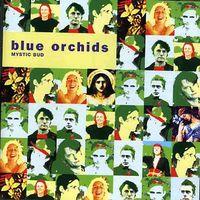 Blue Orchids - Mystic Bud