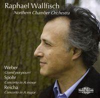RAPHAEL WALLFISCH - Cello Works (Jewl)