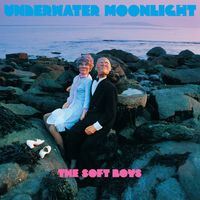 The Soft Boys - Underwater Moonlight [LP]