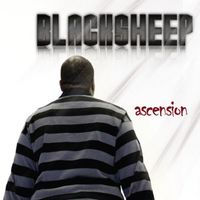 Black Sheep - Ascension