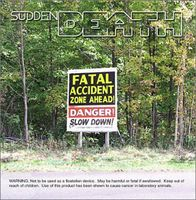 Sudden Death - Fatal Accident Zone