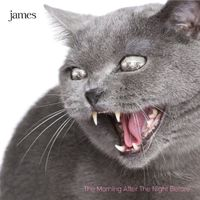 James - The Morning After The Night Before