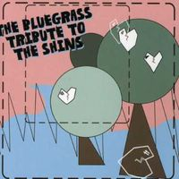 Tribute To Shins - Bluegrass Tribute To The Shins