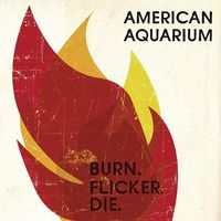 American Aquarium - Burn.flicker.die