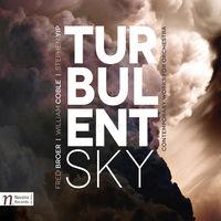 Tonekroup - Turbulent Sky