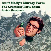 Stefan Grossman - Aunt Molly's Murray Farm