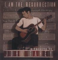 I Am The Resurrectio - I Am the Resurrection: A Tribute to John / Various