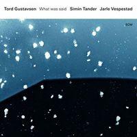 Tord Gustavsen - What Was Said