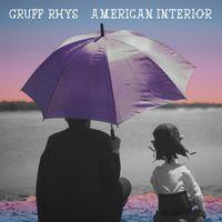 Gruff Rhys - American Interior [Vinyl]