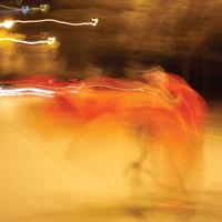 William Basinski - A Shadow In Time [Vinyl]