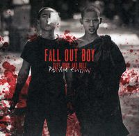 Fall Out Boy - Save Rock N Roll [Limited Edition]