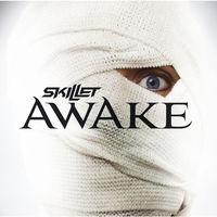 Skillet - Awake [Vinyl]
