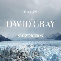 David Gray - Life In Slow Motion