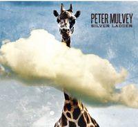 Peter Mulvey - Silver Ladder