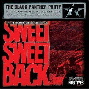 The Revolutionary Analysis Of Sweet Sweetback