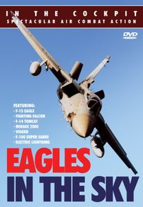 In the Cockpit: Eagles in the Sky