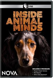 Nova: Inside Animal Minds