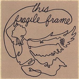 This Fragile Frame
