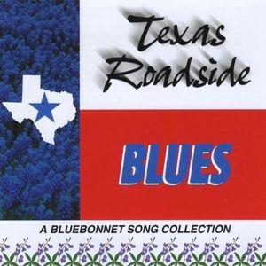 Texas Roadside Blues /  Various