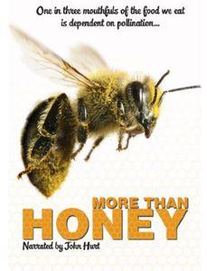 More Than Honey [Import]