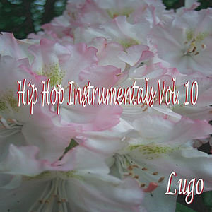 Hip Hop Instrumentals 10