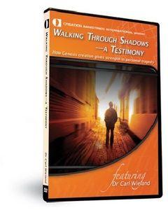 Walking Through Shadows: Testimony