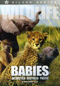 Wildlife: Babies /  Antarctica, Australia, Pacific