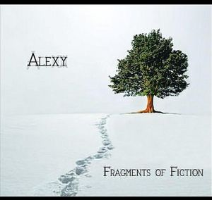 Fragments of Fiction