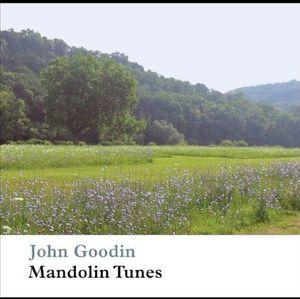 Mandolin Tunes