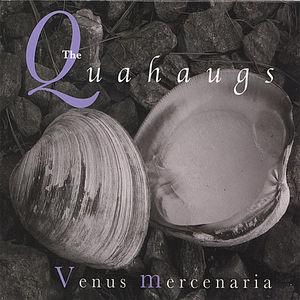 Venus Mercenaria