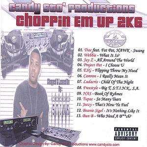 Stink's Choppin Em Up 2K6 /  Various