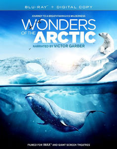 Imax: Wonders of the Arctic