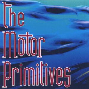 Motor Primitives