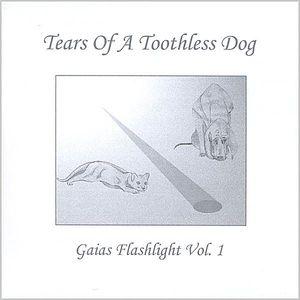 Gaias Flashlight 1