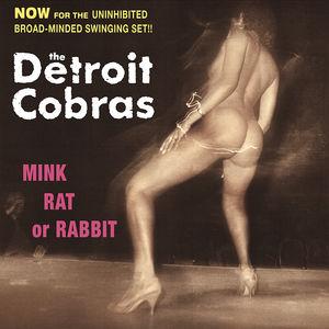 Mink, Rat Or Rabbit