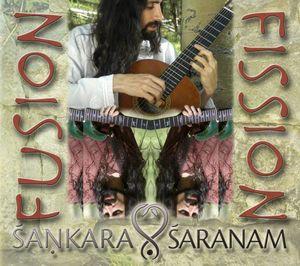 Fusion-Fission