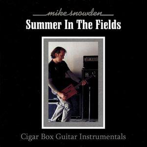 Summer in the Fields: Cigar Box Guitar