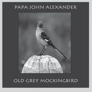 Old Grey Mockingbird