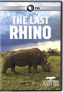 Nature: The Last Rhino