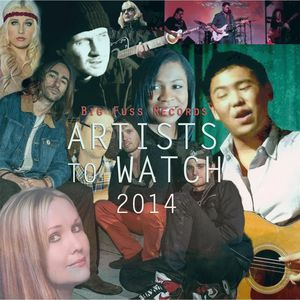 Artists to Watch 2014 /  Various