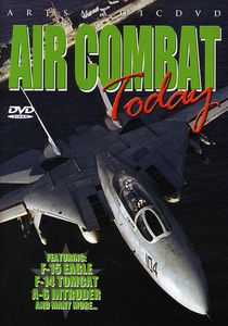 Air Combat Today