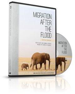Migration After The Flood