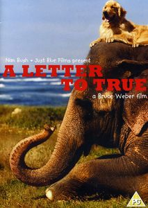 A Letter to True [Import]
