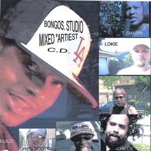 Bongos Mixed Artists
