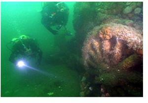 Deep Sea Detectives: Underwater Train Wreck