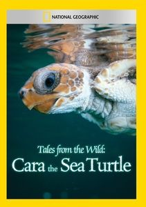Tales From the Wild: Cara the Sea Turtle