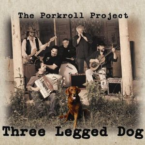 Three Legged Dog