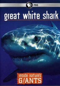 Inside NatureS Giants: Great White Shark