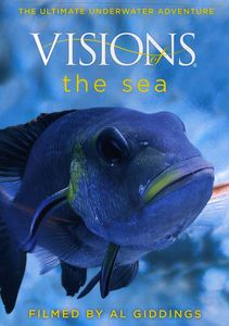 Visions of the Sea