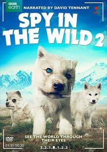 Spy in the Wild: Part 2